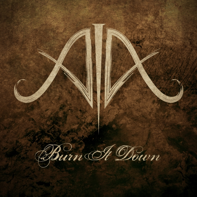 Burn it down cover